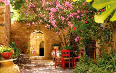 8 Elementos del estilo del jardín mediterráneo